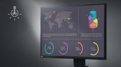 מסך מחשב מקצועי EIZO EV-2456